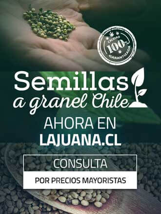 https://www.lajuana.cl/semillas-a-granel/